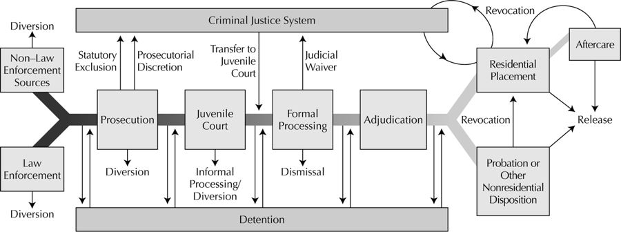 factors influencing criminal justice personnel behavior Decentralization emerged with the idea of 'less is better' where importance was aimed at the criminal justice system through reforms such as 'net-widening' that identified people who were at high risks to commit crimes, and deinstitutionalization of juveniles (not behavior that determines crime, age status instead.